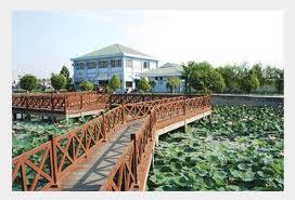 http://mekongdeltaexplorer.vn/wp-content/uploads/bd3.jpg