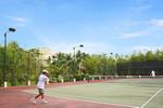 http://mekongdeltaexplorer.vn/wp-content/uploads/vct_tennis.jpg